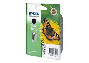 Epson T015
