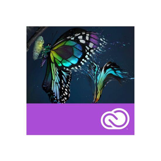 Adobe Premiere Pro CC for Enterprise - Enterprise Licensing Subscription New (månedlig) - 1 bruger