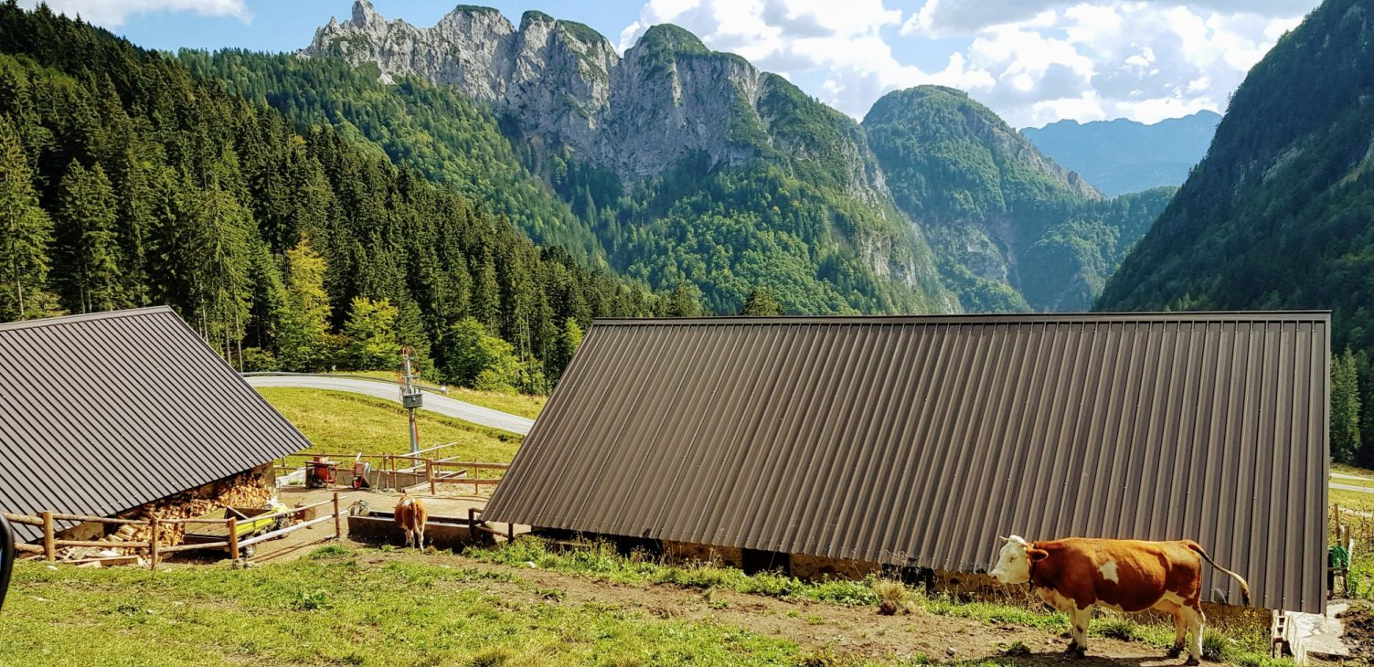 Cortina d'Ampezzo to Maniago highlight