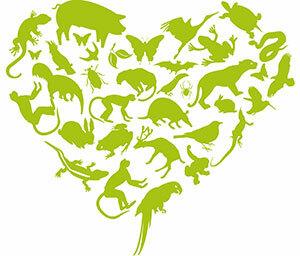 Green Heart Donation