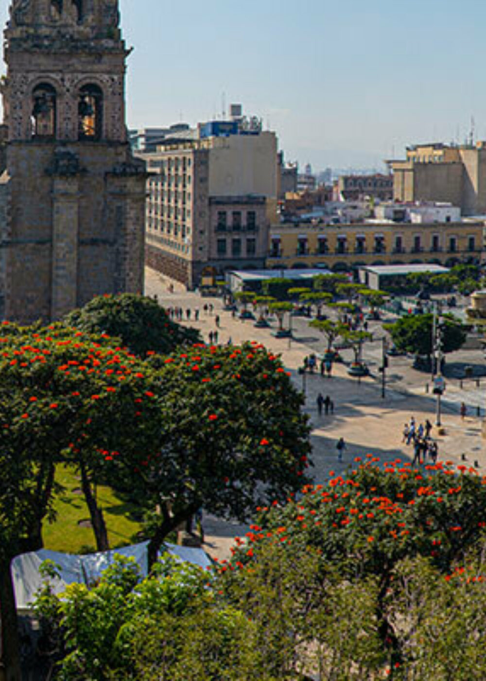 Green Motion Car Rental Mexico Guadalajara Plaza Montenegro 1400x400