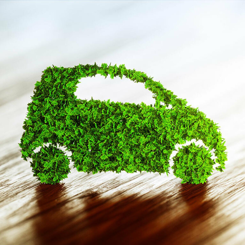 IT Green Motion Car Rental Green Leaf Car 767x767