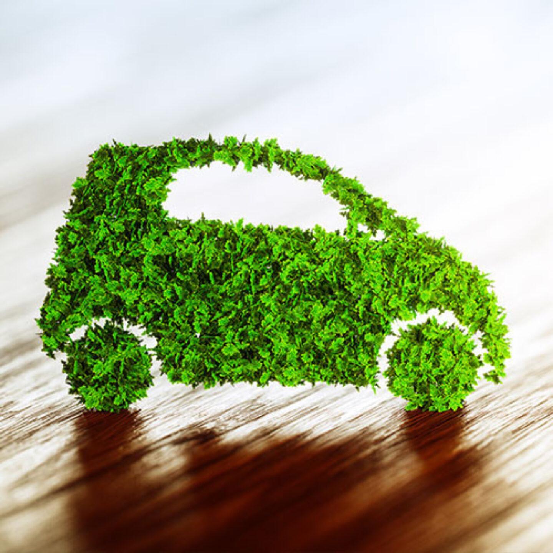 Green Motion Green Car Leaf 500x500