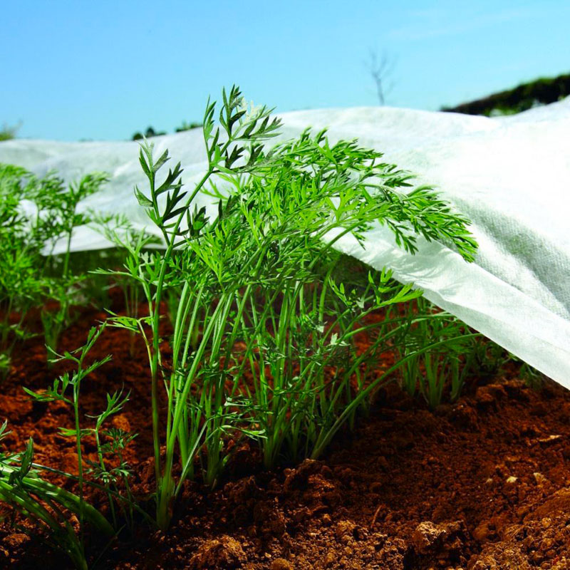 1.1m x 5m Nonwoven Crop Cover Plant Frost Protection Fabric Insect Netting