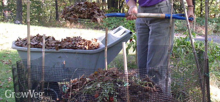 Composting fallen leaves in a leafmould bin