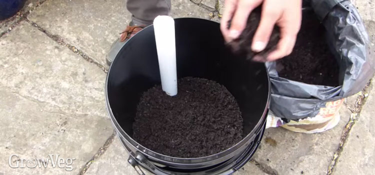 Adding soil to a self-watering container