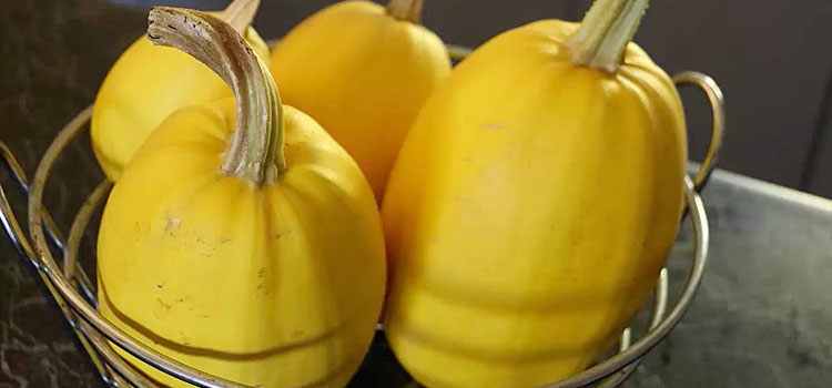 Perfect winter squashes