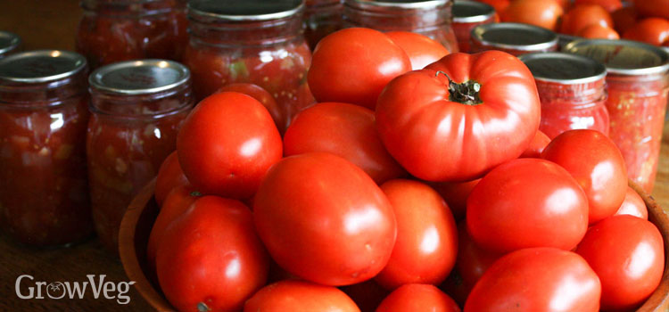 https://s3.eu-west-2.amazonaws.com/growinginteractive/blog/best-ways-to-preserve-tomatoes-canning-2x.jpg