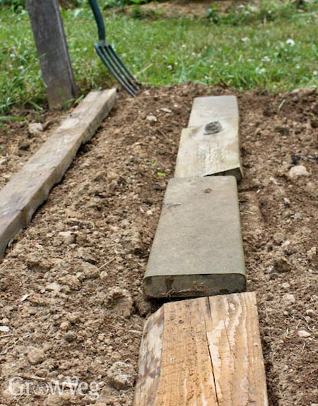 Using boards to aid summer germination of beans