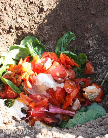 Cathole composting