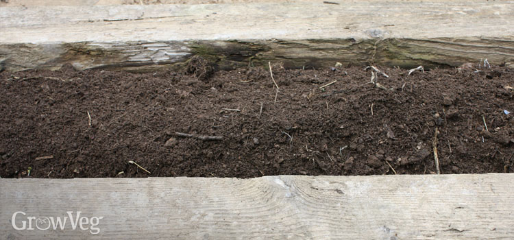 Fresh compost in raised bed