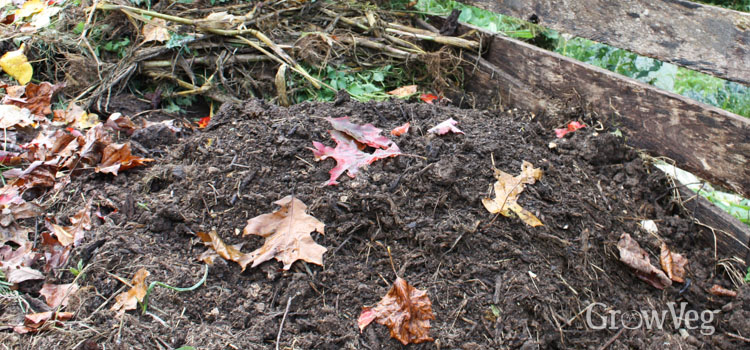 Compost heap in autumn