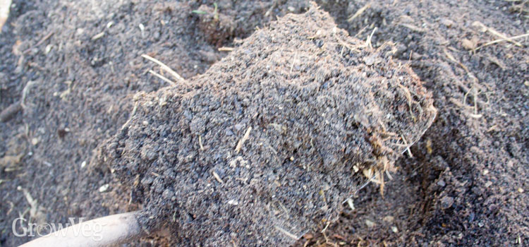Good garden compost ready for spreading onto vegetable beds.