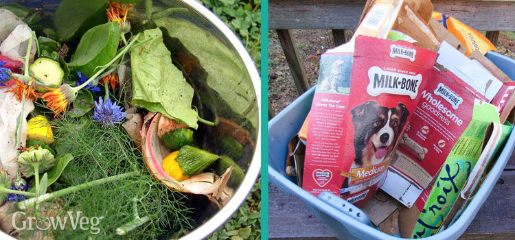 Composting tips for kitchen waste and cardboard