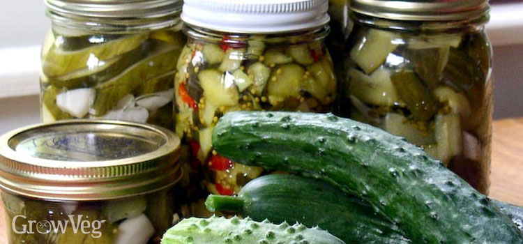 Pickling ingredients