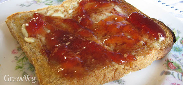 Damson and apple jelly on toast