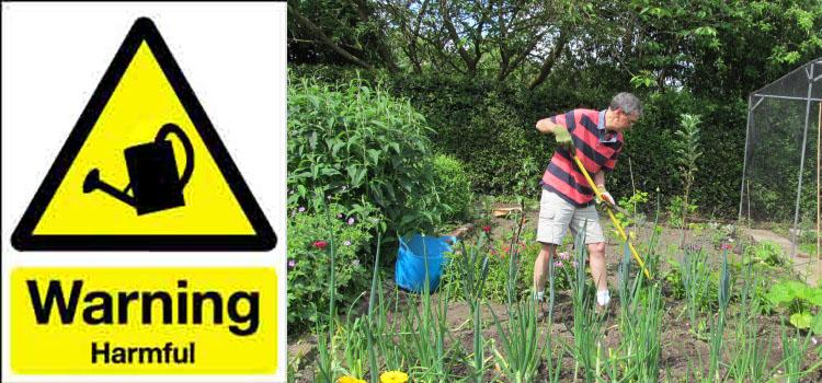 Danger in the garden