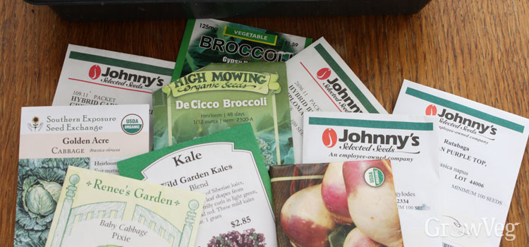 Choosing seeds for your fall garden
