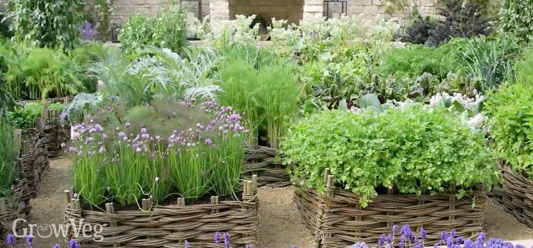 Herb Garden Design Ideas