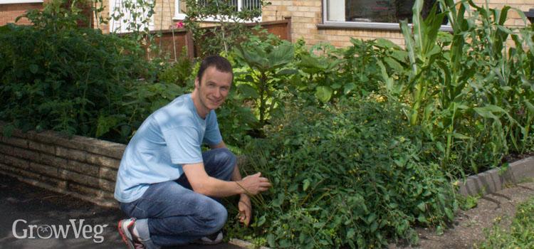 Front vegetable garden