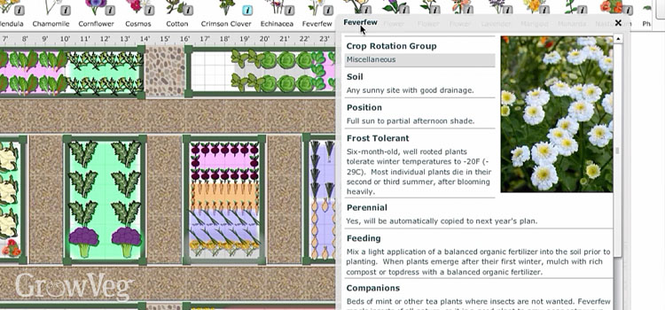 Garden Planner companion planting plan