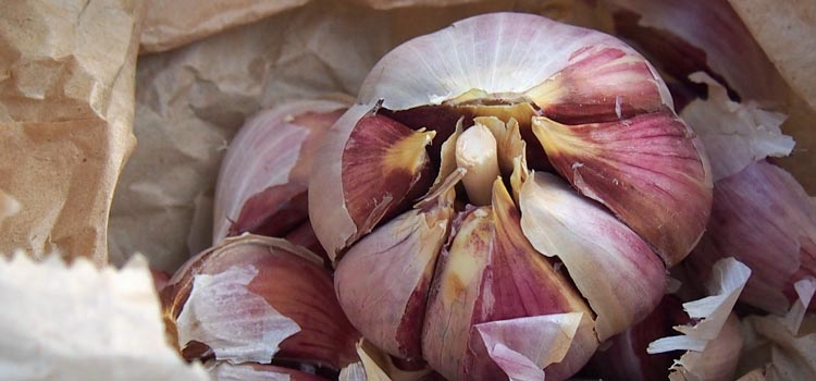 https://s3.eu-west-2.amazonaws.com/growinginteractive/blog/garlic-cloves-for-planting-2x.jpg