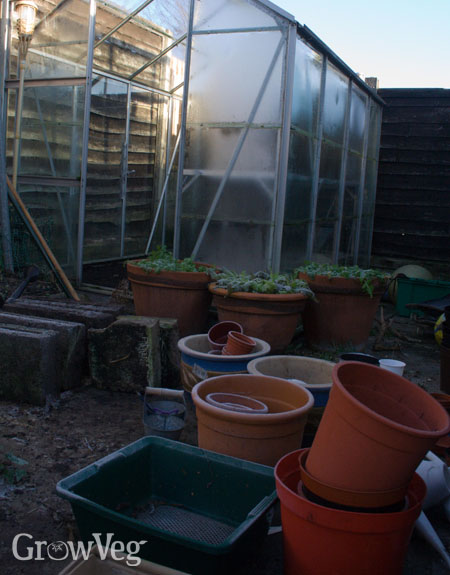 Pots outside a greenhouse in winter