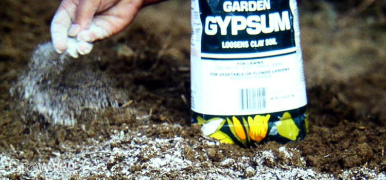 Improving clay soil using gypsum