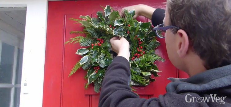 Hanging a traditional Christmas wreath on a front door