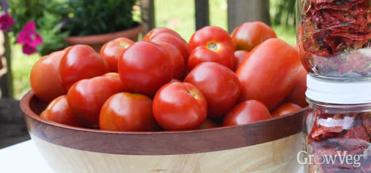 https://s3.eu-west-2.amazonaws.com/growinginteractive/blog/harvested-tomatoes-2x.jpg