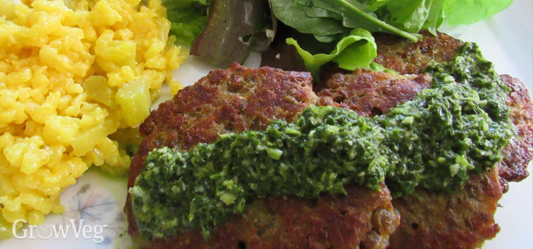 https://s3.eu-west-2.amazonaws.com/growinginteractive/blog/herb-pesto-lentil-cakes-2x.jpg