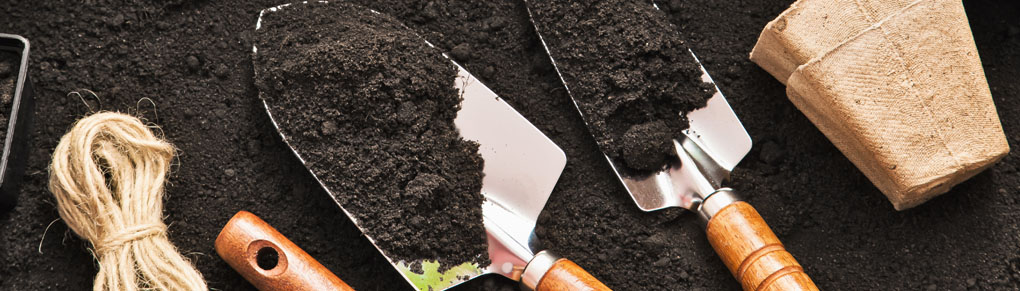 How to Make the Best Potting Mix for Starting Seeds
