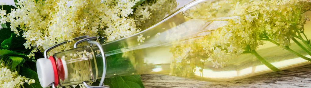 Recipe Ideas for Elderflowers and Elderberries