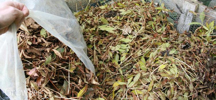 Leafmould bin