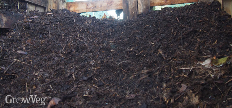 Mature compost, ready to sieve