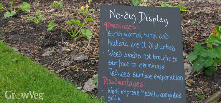 No-dig demonstration garden at Capel Manor College