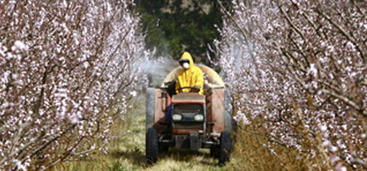 https://s3.eu-west-2.amazonaws.com/growinginteractive/blog/pesticide-spraying-2x.jpg