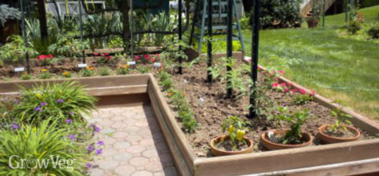 L-shaped potager garden beds