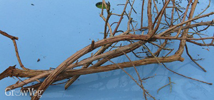 Prunings kept for use around the garden