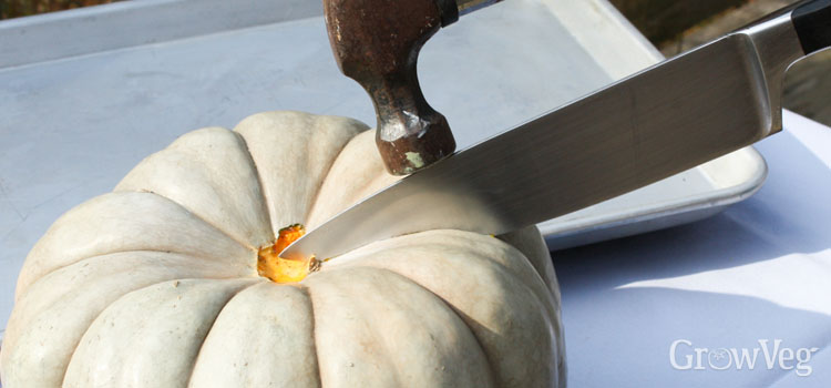 Cutting open a thick-skinned 'Jarrahdale' pumpkin using a stout knife and a hammer