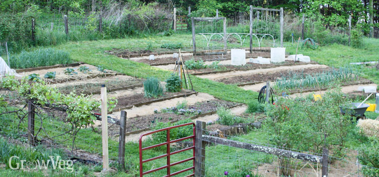 Terraced vegetable garden