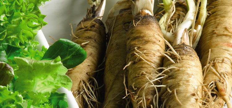 Salsify. Photo courtesy of Suttons Seeds.