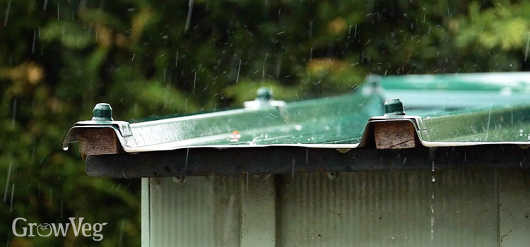 Rain falling on a shed roof