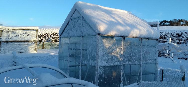 https://s3.eu-west-2.amazonaws.com/growinginteractive/blog/snowy-garden-2x.jpg