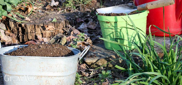 Compost helps restore balance to soil that hosts plant diseases