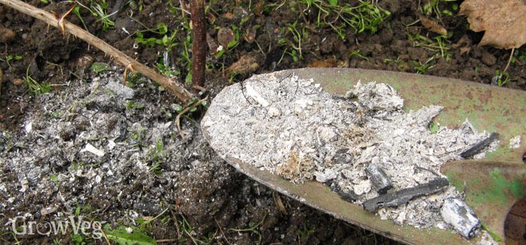 Wood ash for fruit crops
