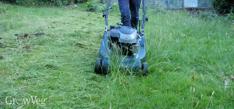 """Mowing"