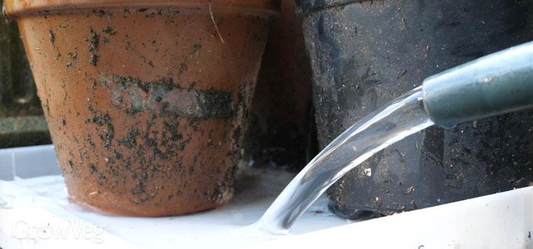 """""""Watering"""