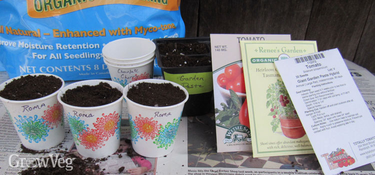 8 Tips For Growing Tomatoes From Seed