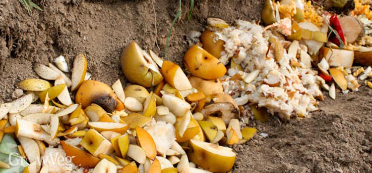 Trench composting kitchen waste